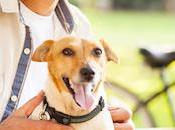 Dog-Friendly Senior Living Communities