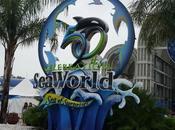 Visit World Aquatica This Summer Antonio, Texas #seaworldsanantonio