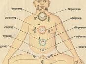 Benefits Drawbacks Yoga System: Georg Feuerstein Interviewed Richard Rosen, Part