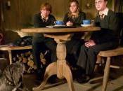Harry Potter Home Inspiration Hagrid's