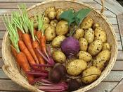 Harvest Monday