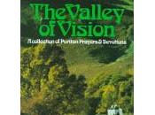 Book Review: Don't Like Devotionals? Then Have You, Valley Vision