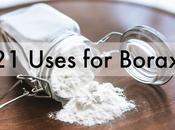 Uses Borax Around House