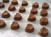 Gluten Free Vegan Chocolate Coconut Cookies