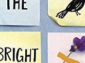 Review: Bright Places Jennifer Niven