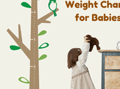 Standard Height Weight Chart Babies That Every Parent Should Know