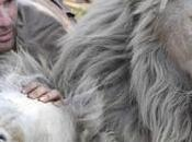 Kevin Richardson Hugs Wild Lions