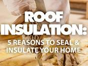 Roof Insulation: Reasons Seal Insulate Your Home