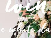 Thinking Eloping Small Wedding Shindig? Read Your Very 'One White Day'!