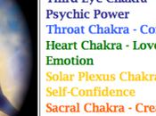 Chakra Coloring Book Meditative