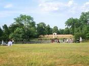 Rosé Hyde Park Picnics
