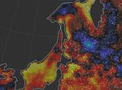 Hothouse Mass Casualties Strike Egypt, Heatwave Hospitalizes Thousands Japan