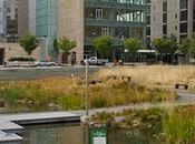Best Portland Parks Your Lunch Break