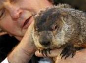 Groundhog Long History, Does Punxsutawney Phil