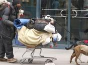 """Pets Homeless"" Open Donations!"