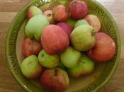 Today I've Been Mostly Processing Apples .....