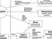 Genetics Obesity Health