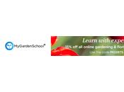 MyGardenSchool Week Planting Pots Winter Interest Spring