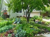 Safe Natural Pest Control Methods Healthy Garden