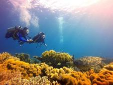 Scuba Diving Chapel, Island: Finding Love, Beauty, Wonder Under Waves