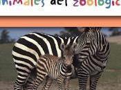 Books Spanish StarWalk Kids Media