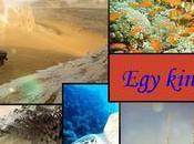 Variety Tours Egypt