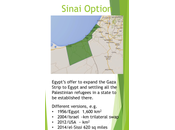 Sinai Option Again