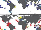 Map: Ocean Warming Could Push Marine Species Beyond Their Limits Carbon Brief