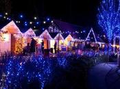 Feeling Festive: Best Kent Attractions This Christmas