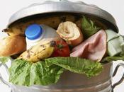 Smart Easy Ways Reduce Food Waste