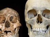 Human Evolution Discoveries Last Week (22/11/15)