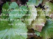 Thankful Salvation: Thoughts Felix