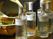Forage with Glasgow Club, Galloway Wild Foods Botanist