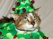 Festive Costume Christmas Tree Cats