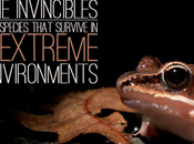 Invincibles: Species Which Survive Extreme Environments
