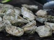 Grilled Oysters with Herb Chevre Parma