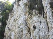 Should Rock Climbing