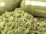 Green Extract Protective Toxic Liver?