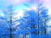 Full Moon Meditation with Archangel Uriel During Snow