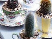 Ways Recycle Reuse Cups Mugs