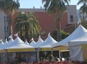 FESTIVAL BOOKS, Tucson, Arizona