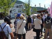 Mount Fuji Flower Festival (Japan)