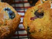 Awesome Diet Blueberry Muffins, Carb, Gluten Free, Approved