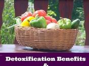 Detoxification Benefits Weight Loss