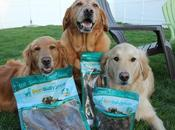 Your Chew With Best Bully Sticks