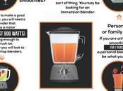 Choose Right Blender [Infographic]