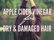 Natural Remedies Damaged Hair Apple Cider Vinegar