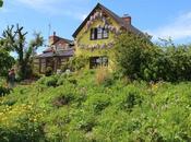 Garden Visit: Montpelier Cottage