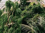 Spotted Instagram: Gardens Visit Inspired