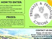 Living Harmony Photography Competition